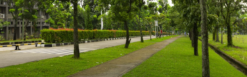 Andalas University filled with shady trees and green